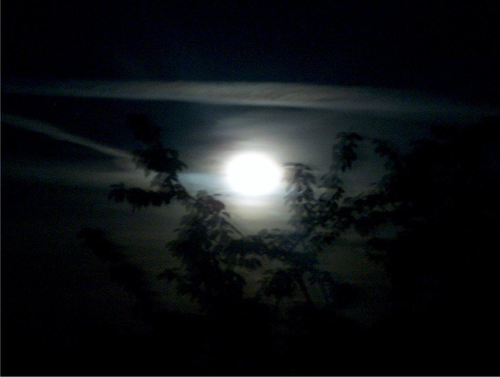 Mond24-5-05.jpg